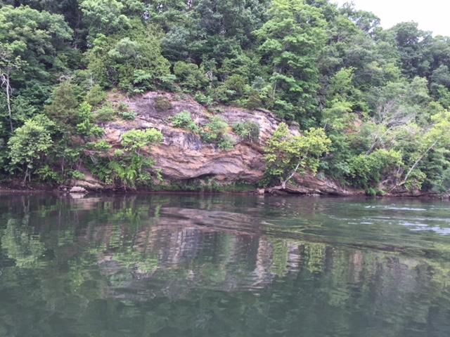 Name:  river2.JPG Views: 192 Size:  168.5 KB