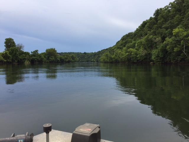 Name:  river.JPG Views: 189 Size:  78.2 KB